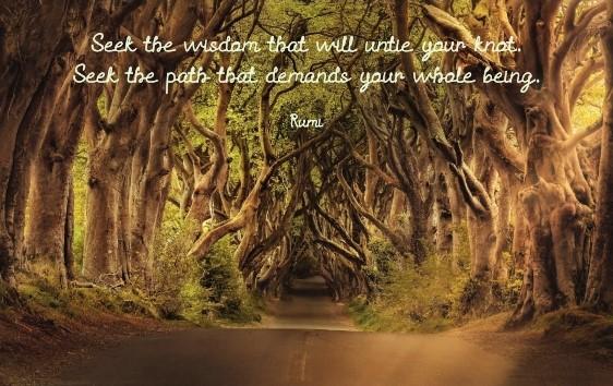 Path Blog 7.9.19_001
