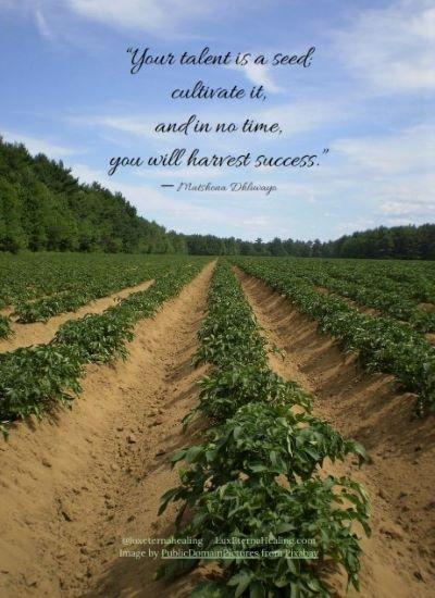Cultivate 11.8.19_001