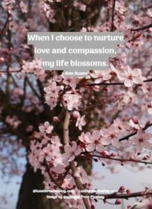When I choose to nurture love and compassion, my life blossoms. -Ann Ruane