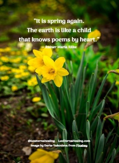 """""""It is spring again. The earth is like a child that knows poems by heart."""" ― Rainer Maria Rilke"""