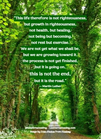 """""""This life therefore is not righteousness, but growth in righteousness, not health, but healing, not being but becoming, not rest but exercise. We are not yet what we shall be, but we are growing toward it, the process is not yet finished, but it is going on, this is not the end, but it is the road."""" ― Martin Luther"""