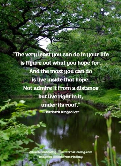"""""""The very least you can do in your life is figure out what you hope for. And the most you can do is live inside that hope. Not admire it from a distance but live right in it, under its roof."""" ― Barbara Kingsolver"""