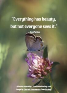 """""""Everything has beauty, but not everyone sees it."""" ― Confucius"""