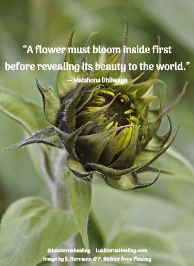 """""""A flower must bloom inside first before revealing its beauty to the world."""" ― Matshona Dhliwayo"""