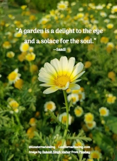 """""""A garden is a delight to the eye and a solace for the soul."""" --Saadi"""