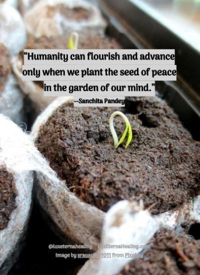 """Humanity can flourish and advance only when we plant the seed of peace in the garden of our mind."" --Sanchita Pandey"