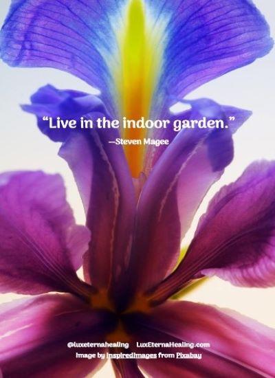 """""""Live in the indoor garden."""" --Steven Magee"""