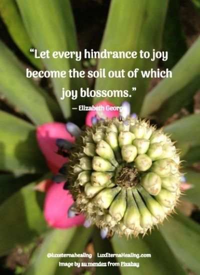 """Let every hindrance to joy become the soil out of which joy blossoms."" ― Elizabeth George"