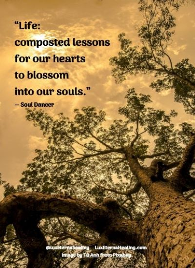 """""""Life: composted lessons for our hearts to blossom into our souls."""" ― Soul Dancer"""