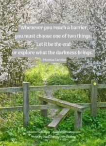 """Whenever you reach a barrier, you must choose one of two things. Let it be the end or explore what the darkness brings."" --Monica Carolan"