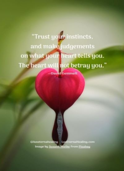 """Trust your instincts, and make judgements on what your heart tells you. The heart will not betray you."" --David Gemmell"