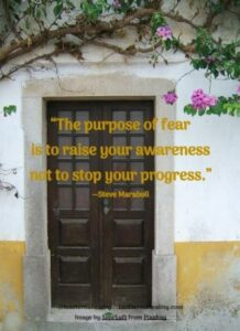 """""""The purpose of fear is to raise your awareness not to stop your progress."""" --Steve Maraboli"""