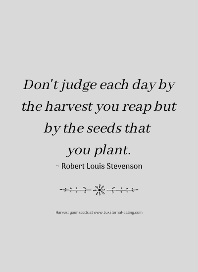 Don't judge each day by the harvest you reap but by the seeds that you plant. ~ Robert Louis Stevenson