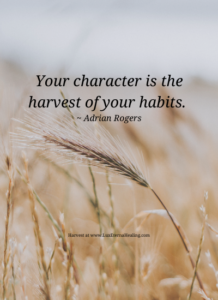 Your character is the harvest of your habits. ~ Adrian Rogers