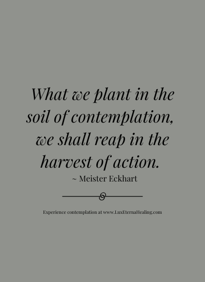 What we plant in the soil of contemplation, we shall reap in the harvest of action. ~ Meister Eckhart