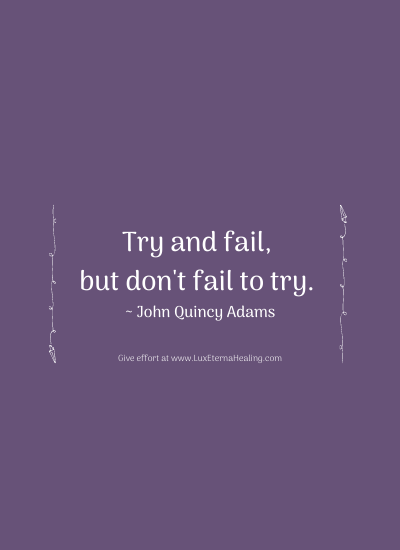 Try and fail, but don't fail to try. ~ John Quincy Adams