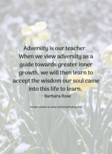 Adversity is our teacher. When we view adversity as a guide towards greater inner growth, we will then learn to accept the wisdom our soul came into this life to learn. ~ Barbara Rose