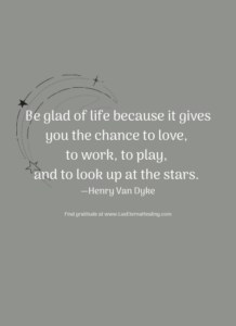 Be glad of life because it gives you the chance to love, to work, to play, and to look up at the stars. —Henry Van Dyke