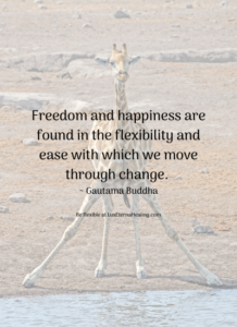 Freedom and happiness are found in the flexibility and ease with which we move through change. ~ Gautama Buddha